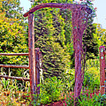 The Wooden Arch by Geraldine DeBoer