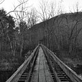 The Wooden Bridge by Trish Tritz