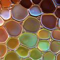 The World Of Bubbles II by Jaroslaw Blaminsky