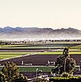 The Yuma Valley by Robert Bales