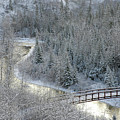 The Zen Of Bridge 5 by Chuck Szmurlo