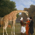 The Zoological Garden by MotionAge Designs