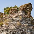 Theodosian Walls - View 1 by Bob Phillips