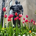 These Tulips Are For You by Bonny Puckett