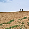 They Are Not At The Top Of This Dune Climb In Sleeping Bear Dunes National Lakeshore-michigan by Ruth Hager