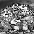 Thiksey Monastery - Paint Bw by Steve Harrington
