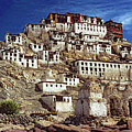 Thiksey Monastery by Steve Harrington