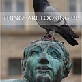 Things Are Looking Up - Card Or Poster by Patricia Strand
