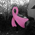 Think Pink by Steve Cochran