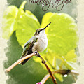 Thinking Of You Hummingbird In The Rain Greeting Card by Christina Rollo