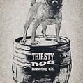 Thirsty Dog Brewing Co. Keg by Edward Fielding