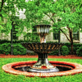 Thirsty Fountain  -  Louky812 by Frank J Benz