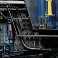 Thirteen by Murray Bloom