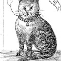 This Is My Book, Miau-u-u, 1859 by Wellcome Images