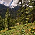 This Is Washington State No.1 - Klipchuck by Paul W Sharpe Aka Wizard of Wonders