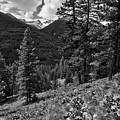 This Is Washington State No.1b - Klipchuck by Paul W Sharpe Aka Wizard of Wonders
