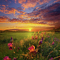 This Life Is A Gift For Everyone by Phil Koch