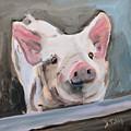 This Little Piggy by Donna Tuten