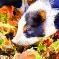 This Little Piggy by Josh Manwaring