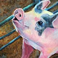 This Little Piggy by Stephanie Allison