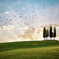 This Majestic Land by Evelina Kremsdorf