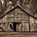 This Old Barn by Dave Bosse