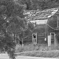 This Old House by Rhonda Barrett