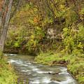 Thompson Creek Autumn 1 B by John Brueske