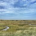 Thornham Marshes, Norfolk by John Edwards
