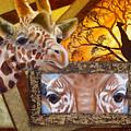 Those Eyes     Giraffe  Safari Series No 3 by Darlene Green