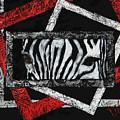 Those Eyes...zebra by Darlene Green