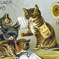 Thread Trade Card, 1880 by Granger