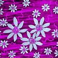 Three And Twenty Flowers On Pink by Rachel Hannah