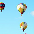 Three Balloons by Linda Cupps