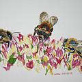 Three Beez by Helen Shideler