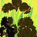 Three Black Irises, Painting by Irina Afonskaya