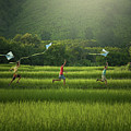 Three Boys Are Happy To Play Kites At Summer Field In Nature In  by Somchai Sanvongchaiya