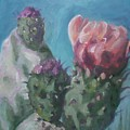 Three Cactus Blossoms by Aleksandra Buha