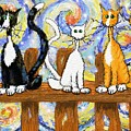 Three Cats On A Fence by Debra Baldwin