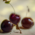 Three Cherries Still Life by Bellesouth Studio