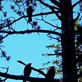 Three Crows In A Tree by Celtic Artist Angela Dawn MacKay