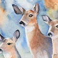 Three Deer by Marsha Karle