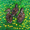 Three Ducklings by Valerie Ornstein