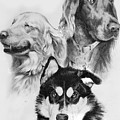 Three Friends by Rachel Christine Nowicki