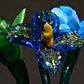 Three Glass Flowers by Jennifer Wick