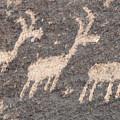 Three Goats by David Arment