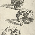 Three Human Skulls by Salvator Rosa