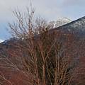 Three Peaks In Winter by Bill Driscoll