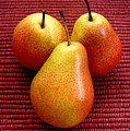 Three Pears by Lucyna A M Green