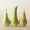 Three Pears by Peter Chadwick LRPS